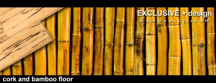 cork & bamboo floor
